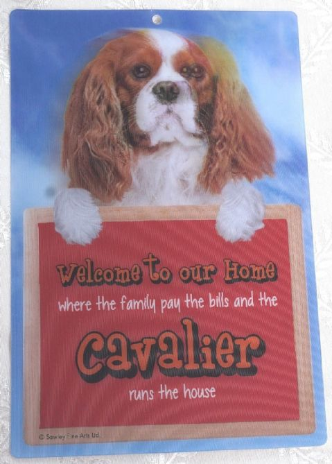 CAVALIER BLENHEIM 3D WELCOME SIGN STUNNING EYE CATCHING 23CM X 15CM DOG SIGN